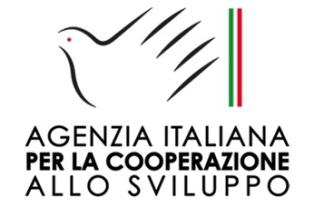 RAI ITALIA: L