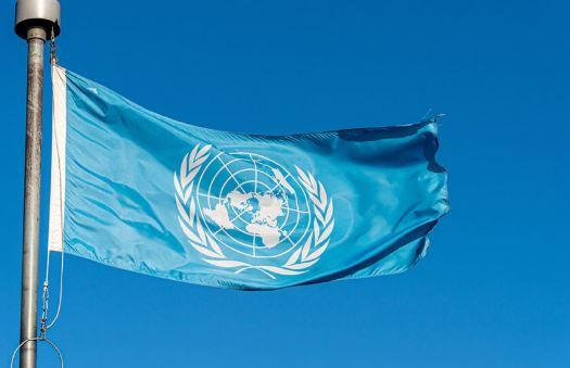 L'Onu di fronte alle Nuove Sfide Economico-Sociali: il webinar della SIOI