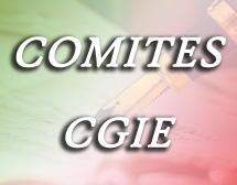 CORONAVIRUS, IN AUSTRALIA VIDEOCONFERENZA DI CGIE/COMITES