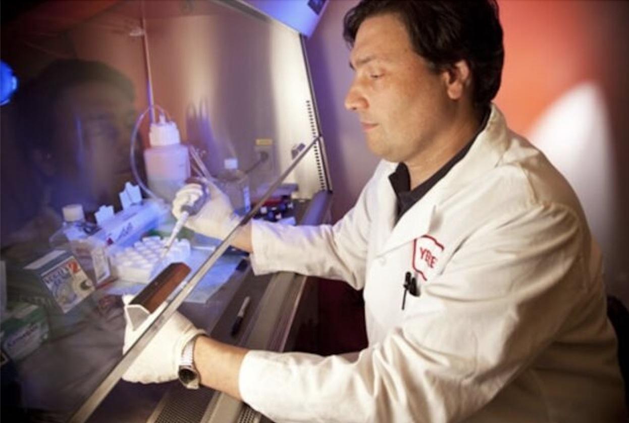 Guido Silvestri chiarisce ogni dubbio: Covid, vaccini, lockdown e anticorpi monoclonali - di Isabella Weiss di Valbranca