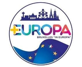 """REFERENDUM COSTITUZIONALE: I GRUPPI ESTERI DI PIÙ EUROPA DICONO """"NO"""""""