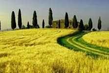 ITALIAN BEAUTY: IL MADE IN ITALY SU RAI ITALIA