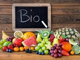 Il cibo biologico in Germania: domani il webinar di Italcam