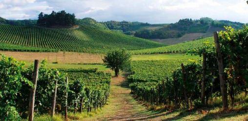 Borghi in Vinum: 5 comuni e una road map per valorizzare il territorio