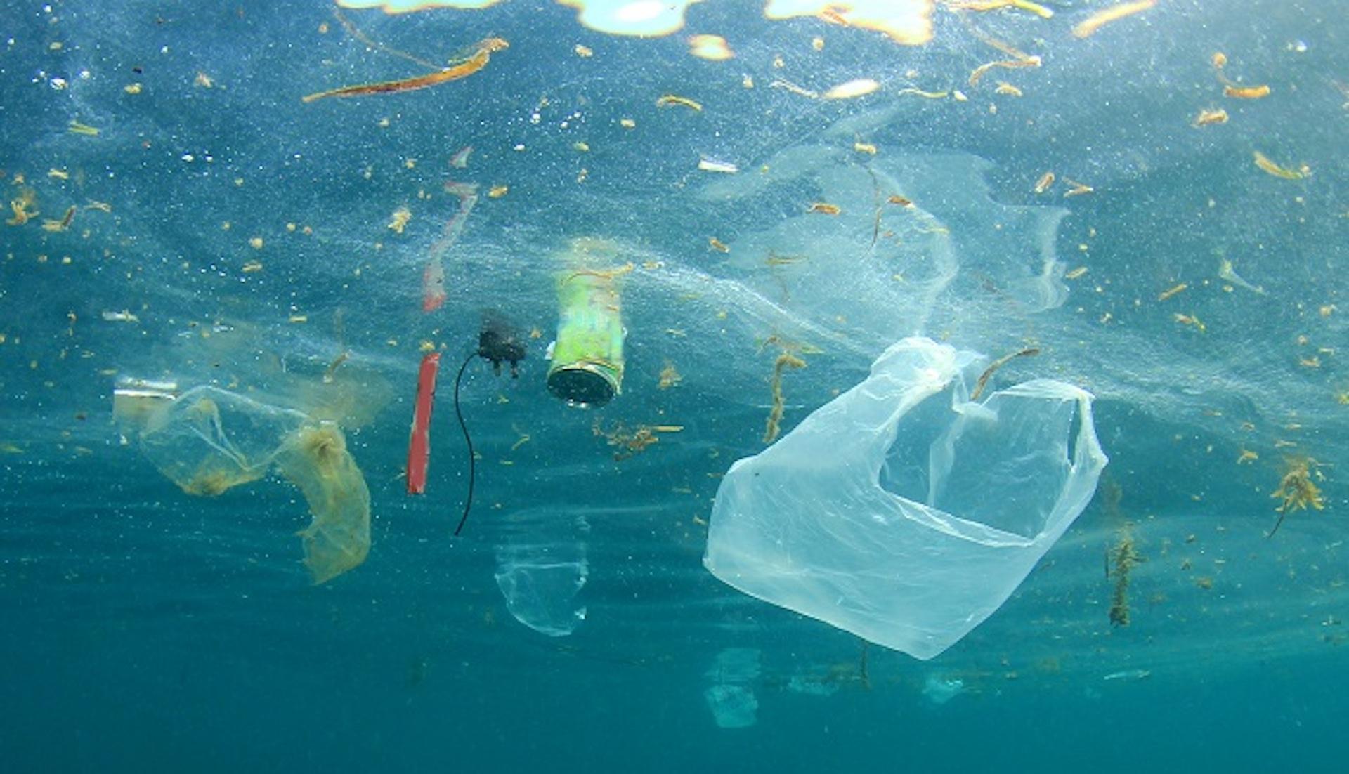 """Plastiche in mare: un pericolo """"remoto""""? La ricerca del CNR"""