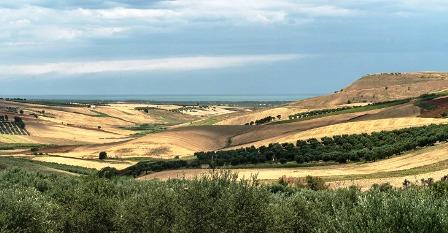 """COOPERAZIONE AGROALIMENTARE: REGIONE PUGLIA E CIHEAM PRESENTANO """"ORGANIC ECOSYSTEM"""""""