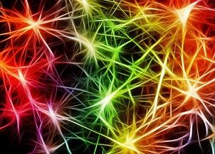 LE NANOTECNOLOGIE CHE PERMETTONO DI ASCOLTARE IL DIALOGO TRA LE CELLULE A STELLA DEL CERVELLO: LO STUDIO DEL CNR