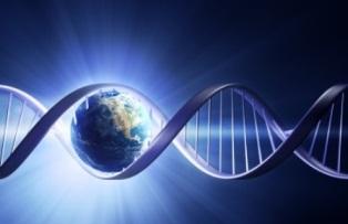 CNR: LA STORIA EVOLUTIVA DEI SARDI ATTRAVERSO LO STUDIO DEL DNA ANTICO