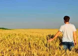 IMPRESE: AGRICOLTURA AL TOP PER GIOVANI AL COMANDO