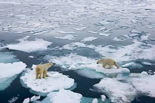 """RAPPORTO SPECIALE IPCC: WWF """"IMPERATIVO ACCELERARE L'AZIONE PER IL CLIMA PER MANTENERE AUMENTO TEMPERATURA GLOBALE ENTRO 1,5 GRADI CENTIGRADI"""""""