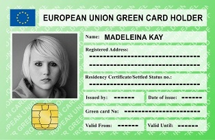EUROPEAN UNION GREEN CARD: UNGARO (PD) ALLA CAMERA PER LA PETIZIONE DEI NEW EUROPEANS