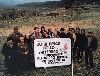 """50 anni di zafferano: nozze d'oro per la cooperativa """"Altopiano di Navelli"""""""
