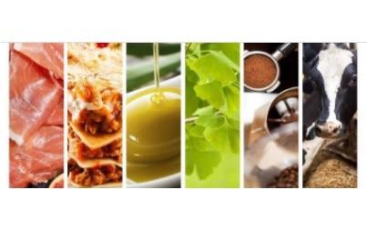 I certificati sanitari nel settore agroalimentare tra Italia e Uk: il webinar di Ice e Ambasciata