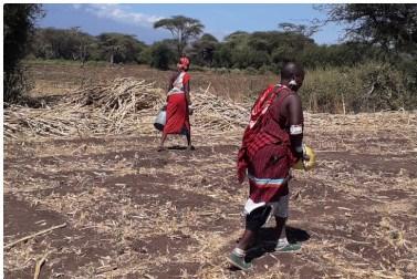 Kenya: a Kandisi l