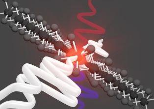 """Il più sottile amplificatore ottico mai realizzato: lo studio su """"Nature Photonics"""""""