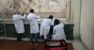 Federico II e MANN per il restauro del mosaico di Alessandro