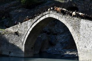 Cooperazione allo sviluppo: un ponte tra Italia e Albania