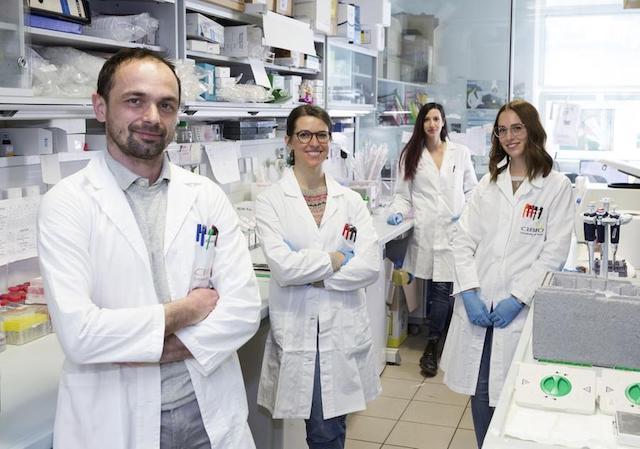 Studio UniTrento-Telethon scopre un nuovo meccanismo alla base della malattia di Parkinson