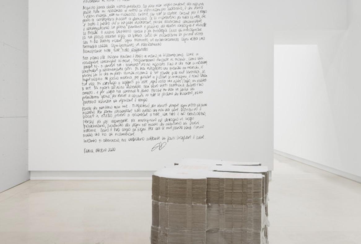 Giulia Crispiani vince il Premio Giovani Collezionisti per Quadriennale d'arte 2020 FUORI