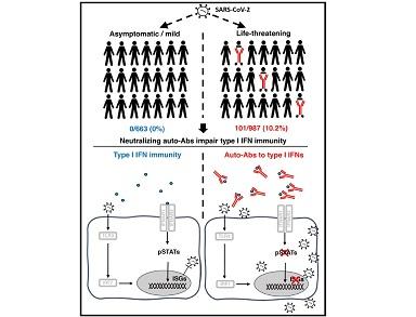 COVID-19: IL 15% DELLE FORME GRAVI SPIEGATO DA ANOMALIE GENETICHE E IMMUNOLOGICHE