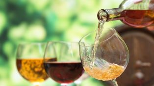 Focus sui vini siciliani all'IIC di Haifa