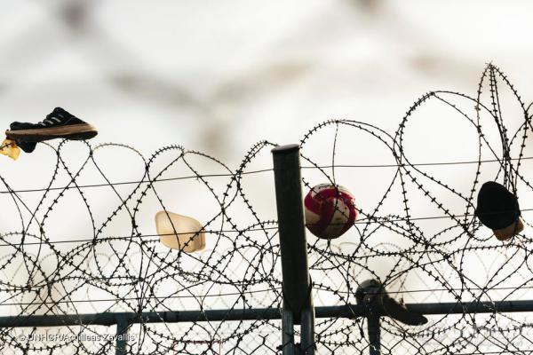 UNHCR: il diritto d