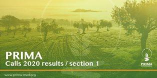 Risorse idriche e sistemi agroalimentari nel Mediterraneo: Italia protagonista dei bandi PRIMA