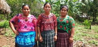 8 marzo: Treedom pianta alberi in Guatemala a sostegno delle donne