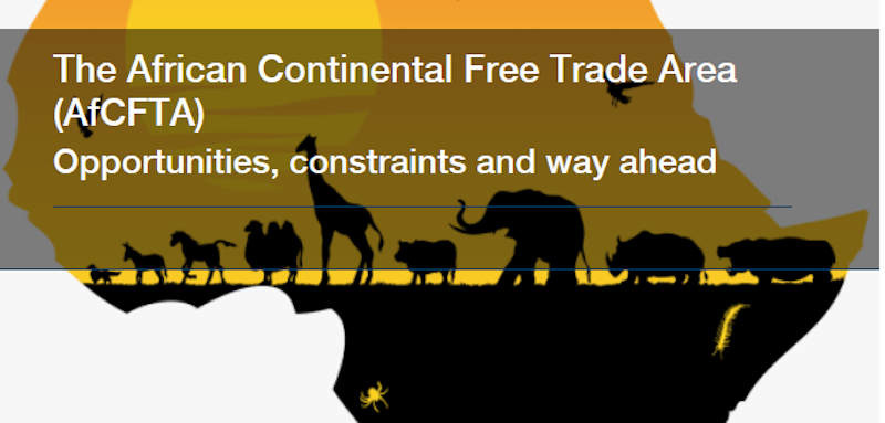 "Pretoria: l'Ambasciata organizza il webinar ""The African Continental Free Trade Area (AfCFTA): opportunities, constraints and way ahead"""