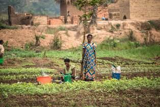 """Repubblica Democratica del Congo: secondo FAO e WFP la fame ha raggiunto dimensioni """"spaventose"""""""