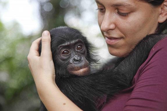 WWF Italia: Alessandra Prampolini nuova Direttrice Generale