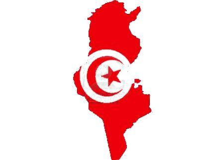 """Cooperazione Toscana-Tunisia: seminario regionale con l'AICS sul progetto """"Futur Proche"""""""