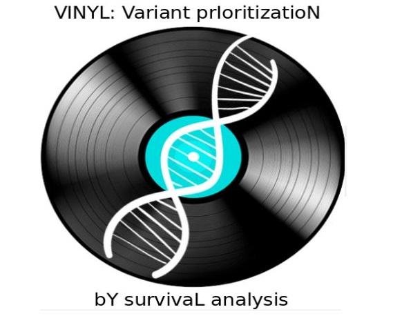 VINYL: il software che velocizza l'individuazione delle malattie genetiche