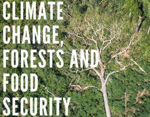 NAIROBI: UN SIMPOSIO SU CAMBIAMENTI CLIMATICI E SICUREZZA ALIMENTARE CON AMBASCIATA E IIC