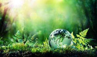 Le città e le sfide della neutralità climatica: il webinar di Green City Network e Italy for Climate
