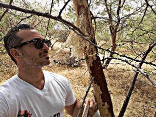 TOMMASO, MODERNO RE MAGIO ITALIANO IN KENYA - di Freddie del Curatolo