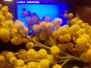 DALL'8 MARZO ALLE PRIMARIE: LA NEWSLETTER DI LAURA GARAVINI (PD)