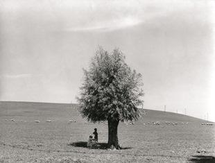 """""""WILLY RONIS. FOTOGRAFIE 1934-1998"""": A VENEZIA LA RETROSPETTIVA COMPLETA DEL FOTOGRAFO FRANCESE"""