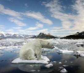 UNIVERSITÀ DI BARI: ROBERTO SULPIZIO NEL TEAM INTERNAZIONALE DI RICERCA SUL CAMBIAMENTO CLIMATICO