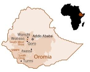 IL CANCRO COLPISCE IN SILENZIO ANCHE IN AFRICA: DALL'ETIOPIA UN ESEMPIO DI PREVENZIONE E TRATTAMENTO DI MEDICI CON L'AFRICA CUAMM