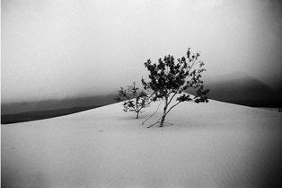 """""""INHABITED DESERTS"""": IL FOTOGRAFO ITALIANO JOHN R. PEPPER AL PHOTO ISRAEL DI TEL AVIV"""