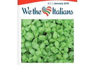"""ONLINE IL NUMERO DI GENNAIO DEL MAGAZINE """"WE THE ITALIANS"""""""