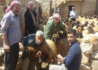 "A BRUXELLES LA CONFERENZA ""RELIEF IN PROTRACTED CRISES: THE SYRIA CASE"""