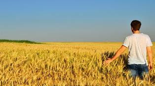 AGRI LAB: CON LA DONAZIONE DI UN MILIONE DI FONDAZIONE INVERNIZZI ALLA BOCCONI CRESCE LA RICERCA DI ECONOMIA DELL