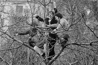 """""""IL NIDO DEGLI UCCELLI"""": A MELBOURNE IL '68 NEGLI SCATTI DI GABRIELE MILELLI"""
